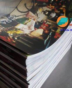 Hình ảnh in màu A4 giấy cứng
