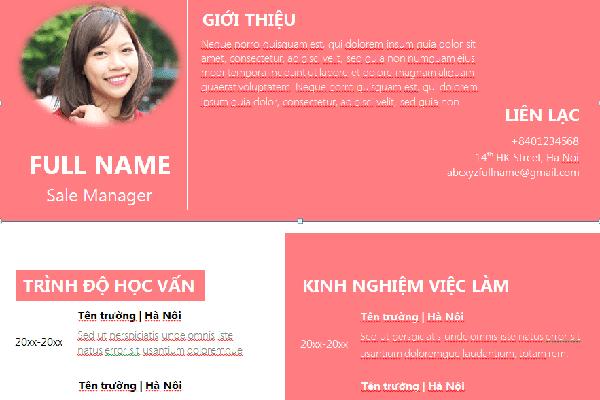 mau-profile-ca-nhan-an-tuong-va-chuyen-nghiep-8